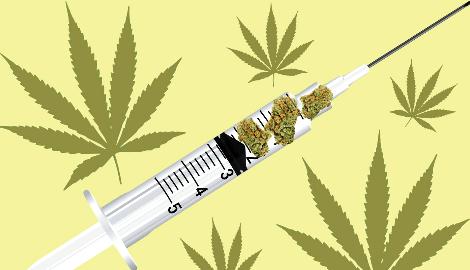 Каннабис может вылечить зависимость от опиоидных наркотиков