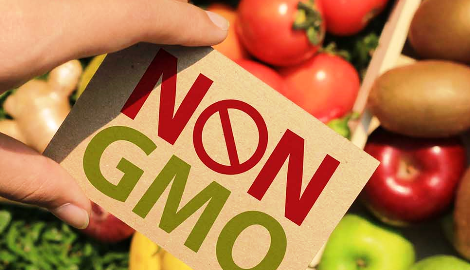 В США опубликовали доклад о безопасности ГМО