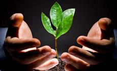 Сельскохозяйственные стартапы