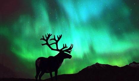Northern Lights: Магия Северного Сияния