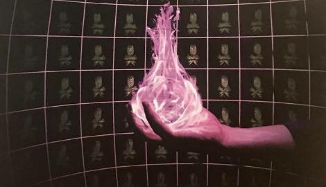 Как мы фотоморфогенез и дзен познали