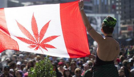 Легалайз в Канаде