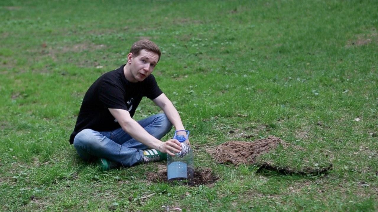 Как защитить свой урожай от болезней и вредителей в открытом грунте