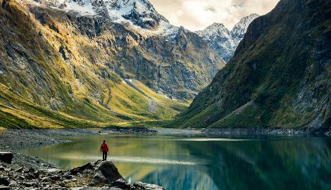 В Новой Зеландии начали обсуждать законопроект о легализации каннабиса