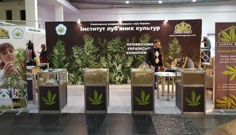 Дзаги информационный партнер Конопляной Ярмарки в Киеве + наш спецкор на события