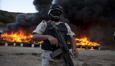 В Мексике было сожжено 134 тонны конфискованного каннабиса
