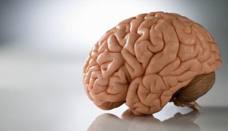 Каннабис замедляет старение мозга