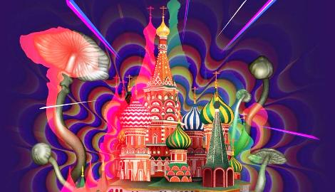 Исследование: на каких наркотиках сидит Россия