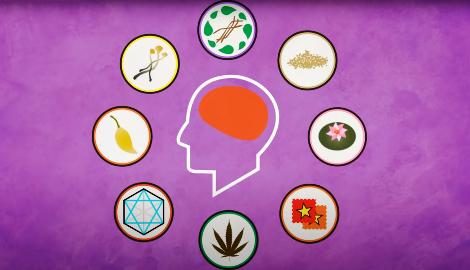 Видео: Как психоделики спасают жизни