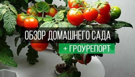 Обзор установки Домашний Сад + Гроурепорт + handmade