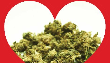 Исследование: Регулярное употребление марихуаны меняет структуру сердца