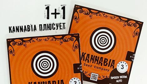 1+1 Kannabia плюсует!