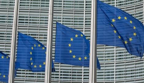 Европарламент призывает оценить использование марии в медицинских целях