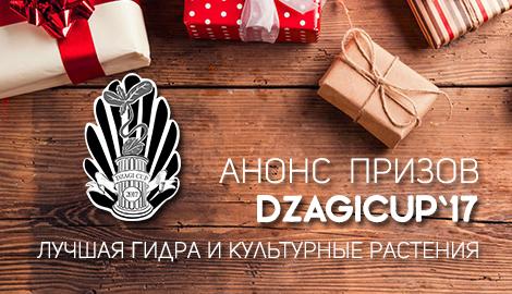 Анонс призов DzagiCup`17: лучшая гидра и культурный репорт