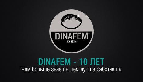 """10 лет Dinafem: """"Чем больше знаешь - тем лучше работаешь!"""""""