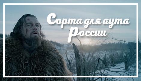 Сорта для аута России