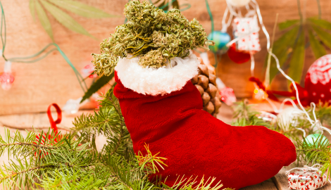 Арестовали за бесплатную марихуану на Рождество