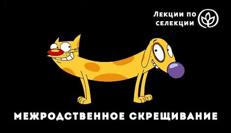 """Лекции по селекции: """"Межродственное скрещивание"""""""