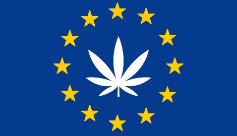 Топ-5 сортов, популярных в Европе в 2020 году