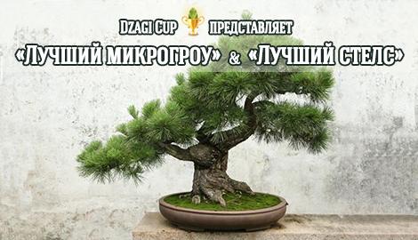 """DzagiCup'15: """"Лучший микрогроу"""" и """"Лучший стелс"""""""