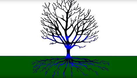 Видео: Урбан Гровер и уроки растениеводства Ч.2 (GORSHKOFFTV)