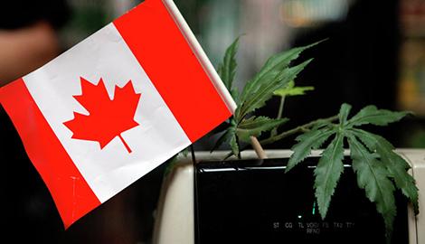 Первый день легалайза в Канаде