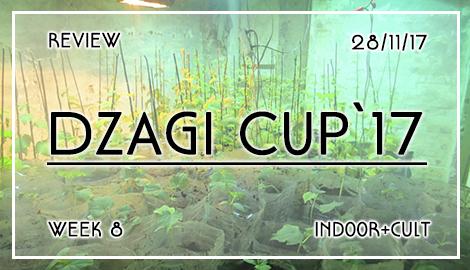 Новости DzagiCup17: Обзор 8 недели