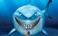 Блог Dinafem:  видео Shark Shock CBD