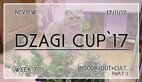 Новости DzagiCup17. Обзор 7 недели индора, аута и культуры. Ч.1