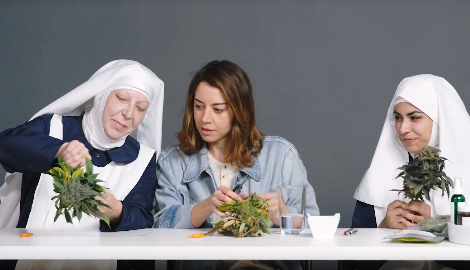 Видео: каннамонашки курят с актрисой