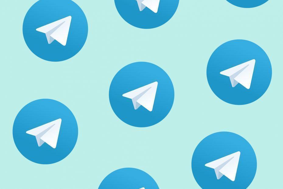 Обзор телеграм каналов Dzagi