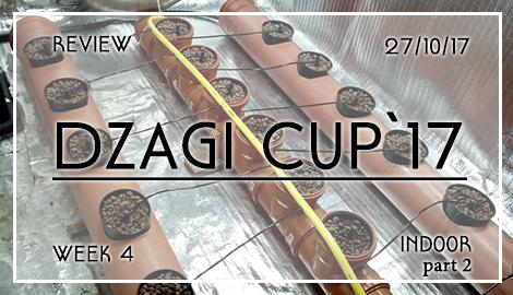 Обзор DzagiCup17: Неделя 4. Индор. Ч2