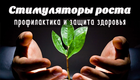 Стимуляторы роста: профилактика и защита здоровья