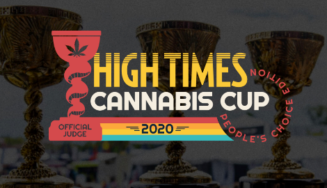 HIGH TIMES: Впервые Cannabis Cup будет оцениваться зрителями