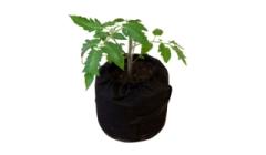 """Flora Grow: """"Что такое Гроубаг, и как им пользоваться"""""""