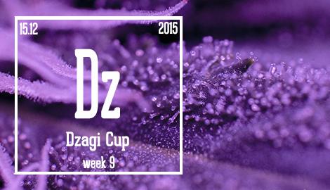 Новости DzagiCup'15. 9 недель от роду