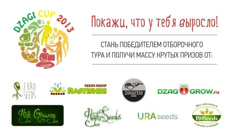 Море крутых призов на DzagiCup 2013!