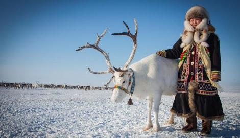 Земледелие в Арктическом климате