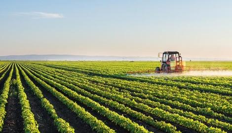 Технологии и урожай. Как прокормить планету?