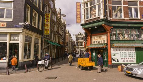 История гибридов: Нидерланды