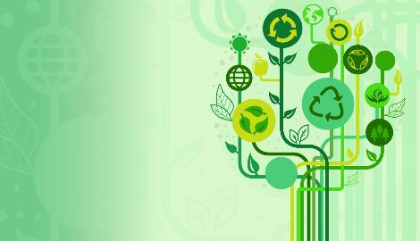 Биотопливо от «ПромРуссКон»