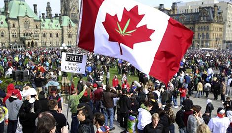 В ООН раскритиковали легализацию MJ в Канаде