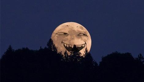 Dzagi Moon