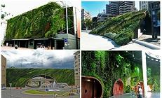 15 вертикальных садов Патрика Бланка