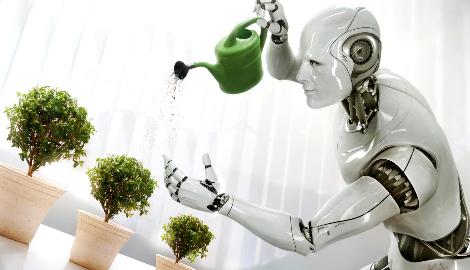 Израиль построит роботизированную ферму для выращивания марьи