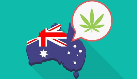 В Австралии растёт популярность каннабиса