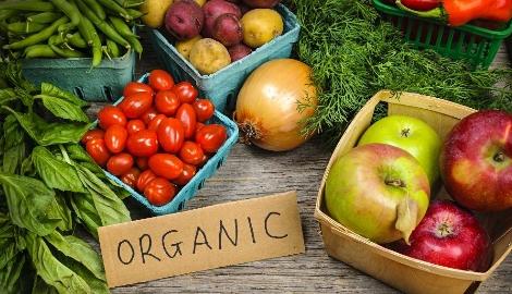 Производители органических продуктов против гидропоники
