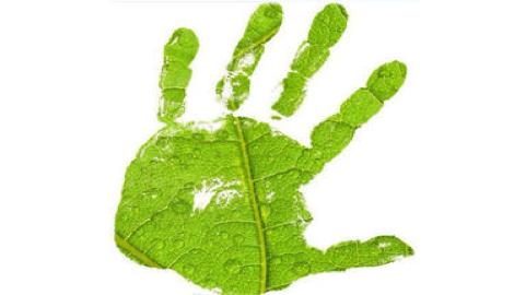 """100% Organic, глава 1: """"Что такое """"органическое выращивание""""?"""