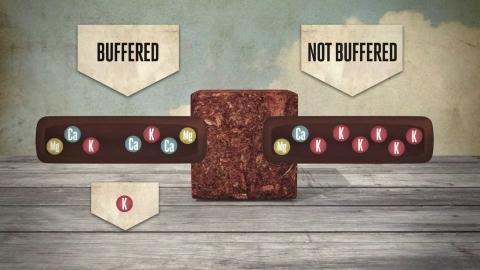 Буферизация кокосового субстрата