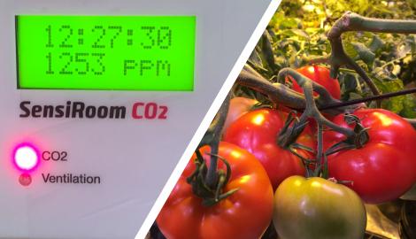 СО2 - польза, методы, опыты, автоматизация